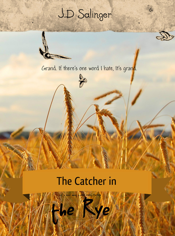 an overview of the protagonists views in the catcher in the rye by j d salinger Complete summary of j d salinger's the catcher in the rye enotes plot summaries cover all the significant action of the catcher in the rye  critical overview essays and criticism .